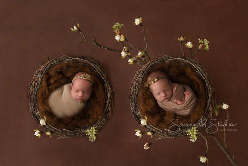 Newborn-Baby-Cairns-Photography-Portrait-Photos-Photographer-Redlynch-17